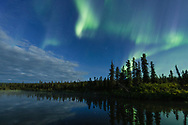 Aurora Borealis over Paxson Lake in Interior Alaska. Summer. Evening.