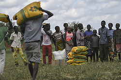 April 8, 2019 - Bebedo, Mozambique - Local volunteers assist in unloading food aid from a helicopter in the aftermath of the massive Cyclone Idai April 8, 2019 near Bebedo, Mozambique. The World Food Programme, with help from the U.S. Air Force is transporting emergency relief supplies to assist the devastated region. (Credit Image: © Corban Lundborg via ZUMA Wire)