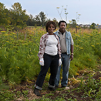 Southern Horizons farmers Margaret Zondo and Rodney Garnes in their market garden at McVean incubator farm, Brampton, Ontario.