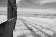 Three plank fence in rural Kentucky.  Infrared (IR) photograph by fine art photographer Michael Kloth. Black and white infrared photographs