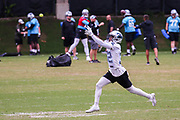 Carolina Panthers safety Cole Luke(32) catches a tennis ball in a drill during minicamp at Bank of America Stadium, Thursday, June 13, 2019, in Charlotte, NC. (Brian Villanueva/Image of Sport)