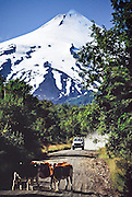 "Villarrica, one of Chile's most active volcanoes, rises to 2847 meters (or 9341 ft) elevation in Villarrica National Park in the Andes mountain range, above the lake and town of the same name, in the Los Lagos Region, Zona Austral, Chile, South America. Cattle wander in front of a car on a gravel access road. The volcano is also known as Rucapillán, a Mapuche word meaning ""House of the Pillán."" Villarrica, with its lava of basaltic-andesitic composition, is one of only five volcanoes worldwide known to have an active lava lake within its crater. The volcano usually generates strombolian eruptions, with ejection of incandescent pyroclasts and lava flows. Melting of snow and glacier ice as well as rainfalls often cause massive lahars (mud and debris flows), such as during the eruptions of 1964 and 1971. What international tourist literature calls the ""Chilean Lake District"" usually refers to the Andean foothills between Temuco and Puerto Montt including three Regions (XIV Los Ríos, IX La Araucanía, and X Los Lagos) in what Chile calls the Zona Sur (Southern Zone). In Chile, Patagonia includes the territory of Valdivia through Tierra del Fuego archipelago. Spanning both Argentina and Chile, the foot of South America is known as Patagonia, a name derived from coastal giants (""Patagão"" or ""Patagoni"" who were actually Tehuelche native people who averaged 25 cm taller than the Spaniards) who were reported by Magellan's 1520s voyage circumnavigating the world."