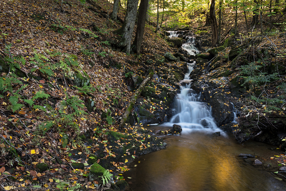 This small waterfall is unnamed officially, and is on a creek that is also unnamed.  Camp Fortune is nearby, however, so I decided to call it Fortune Falls.  Photographed near the Dunlop Picnic Area during Fall Rhapsody in Gatineau Park, Québec, Canada.