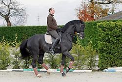 Heylen Tom - Don Renoir<br /> Stoeterij van de Helle - Putte Peulis 2007<br /> Photo © Hippo Foto