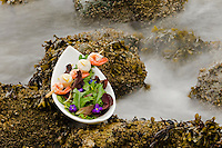 Local restaurants in the Comox Valley present, on a regular basis, a virtual cornucopia of delightful tastes and smells from the ocean.  Courtenay, The Comox Valley, Vancouver Island, British Columbia, Canada.