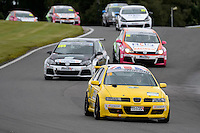 #10 Martyn Culley Seat Leon Cupra during the Maximumgroup.net VAG Trophy at Oulton Park, Little Budworth, Cheshire, United Kingdom. August 20 2016. World Copyright Peter Taylor/PSP.