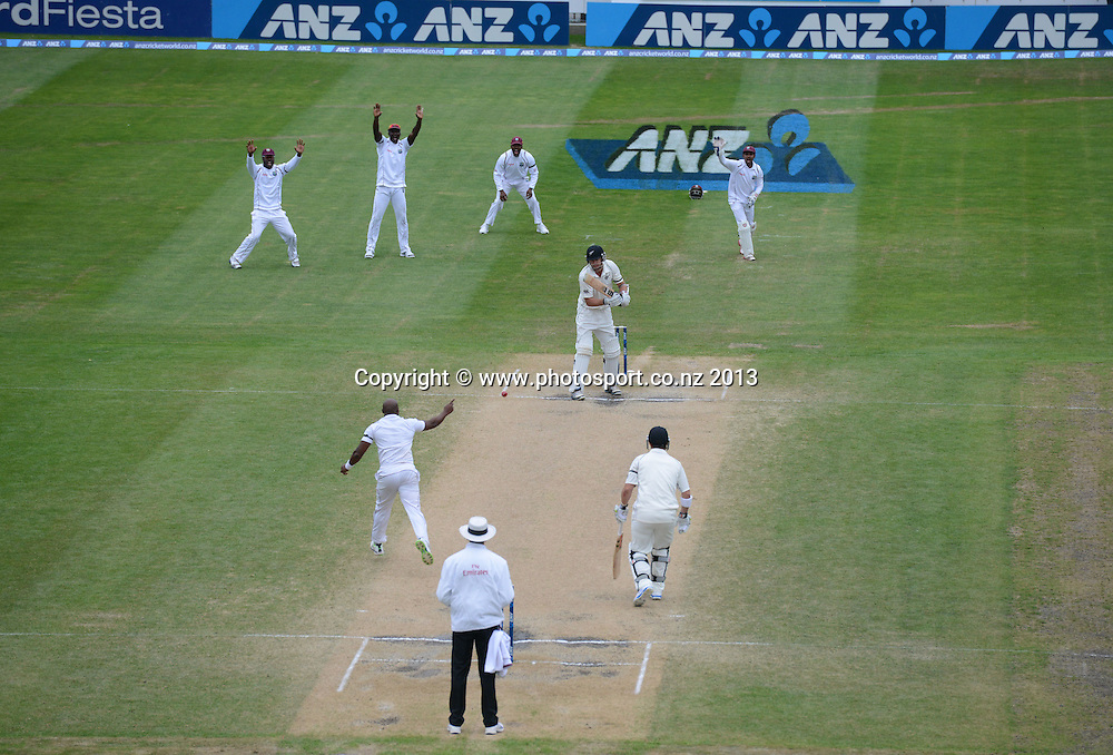 on Day 5 of the 1st cricket test match of the ANZ Test Series. New Zealand Black Caps v West Indies at University Oval in Dunedin. Saturday 7 December 2013. Photo: Andrew Cornaga/www.Photosport.co.nz