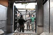 Repetition generale en preparation du transfert du Jaguar de la Menagerie du Jardin des Plantes au Parc Zoologique de Vincennes : vue interieure de l'habitacle du camion qui transportera la Jaguar, new Parc Zoologique de Paris, or Zoo de Vincennes, (Zoological Gardens of Paris, also known as Vincennes Zoo), Museum National d'Histoire Naturelle (National Museum of Natural History), 12th arrondissement, Paris, France. Picture by Manuel Cohen
