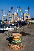 "Fishing boats tied up in Kilmore Quay, Wexford, Ireland This mage can be licensed via Millennium Images. Contact me for more details, or email mail@milim.com For prints, contact me, or click ""add to cart"" to some standard print options."
