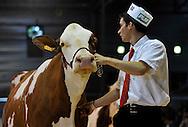 28/05/14 - BESANCON - DOUBS - FRANCE - Concours MONTBELIARD PRESTIGE 2014 - Photo Jerome CHABANNE