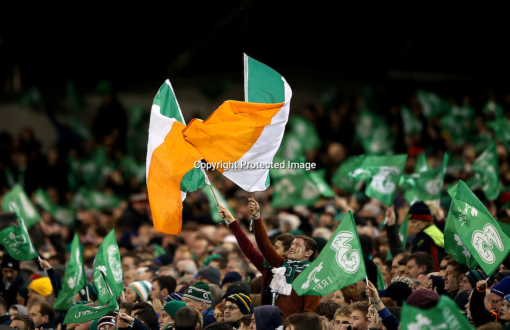 Guinness Series, Aviva Stadium, Dublin 22/11/2014<br /> Ireland vs Australia<br /> Ireland fans celebrate<br /> Mandatory Credit &copy;INPHO/James Crombie