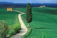 Italie, Toscane, Region de Sienne, paysage des Crete // Italy, Tuscany, Sienna province, Crete landscape