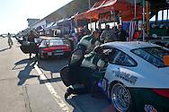 #077 Magnus Racing Porsche 911 GT3 Cup: John Potter, Craig Stanton, Matthew Marsh
