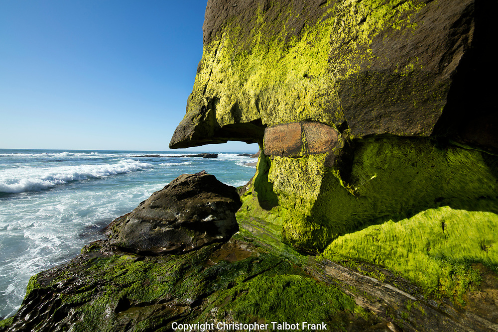 I use a super wide angle lens to take this photo of the odd moss covered coastal rock sticking out into the Pacific Ocean.  The bright green moss covered sea cliff face the blue sea.