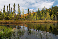 An autumn scene in Sylvania Wilderness.<br />