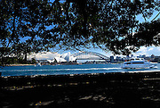 Sydney Opera House, viewed from base of Fleet Steps, The Domain, Sydney, Australia