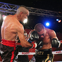Cosme Rivera (L) catches Sergei Lipinets with a right uppercut during a Telemundo Boxeo boxing match at the A La Carte Pavilion on Friday,  March 13, 2015 in Tampa, Florida. (AP Photo/Alex Menendez)