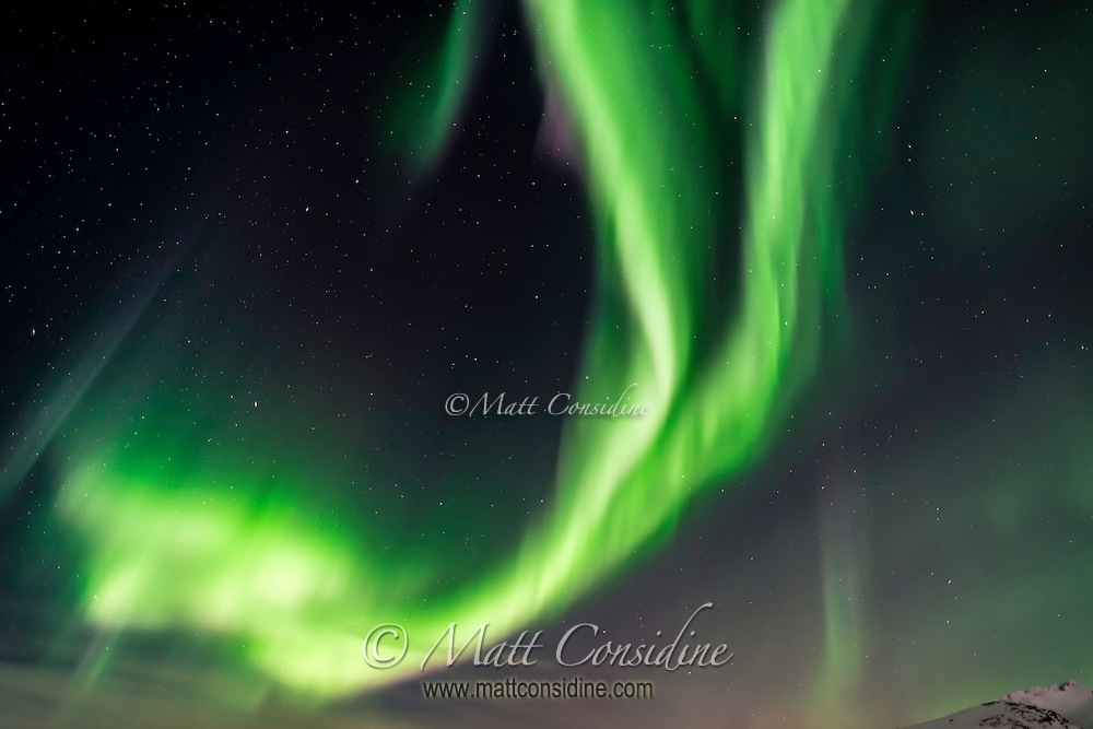 Very strong northern lights with multiple colors with both curtains and shafts of light.. (Photo by Travel Photographer Matt Considine)