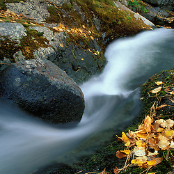 Howe Brook, Baxter State Park, ME. A stream in fall.