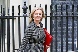 © Licensed to London News Pictures. 16/10/2019. London, UK. Secretary of State for International Trade LIZ TRUSS arrives in Downing Street to attend the weekly cabinet meeting. This week's cabinet meeting was postponed by one day on Tuesday 15 October amid a final push for a Brexit agreement that can be sealed in time for the European Council summit in Brussels on Thursday and Friday. Photo credit: Dinendra Haria/LNP