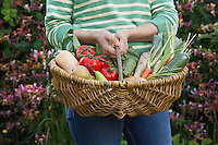 Woman holding fruit and vegetable basket mid section close-up