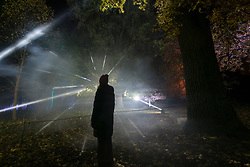 © Licensed to London News Pictures. 11/11/2018. LONDON, UK.  A visitor is seen in silhouette in The Enchanted Woodland which has opened to the public again at Syon House in West London.  An illuminated trail takes visitors through gardens designed by Capability Brown, round an ornamental lake and ends at the spectacular Great Conservatory.   Photo credit: Stephen Chung/LNP