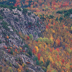 Acadia N.P., Maine. Northern Hardwood Forest. South Bubble from Sargent Mountain.  Fall foliage.
