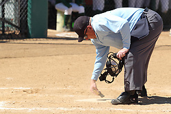 11 April 2015:  Jay McDaniel during an NCAA Division III women's softball game between the Washington University Bears and the Illinois Wesleyan Titans in Bloomington IL
