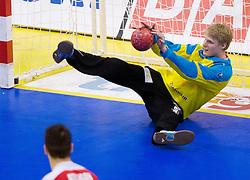Aron Rafn Edvarsson of Iceland during handball match between France and Iceland in  Main Round of 10th EHF European Handball Championship Serbia 2012, on January 25, 2012 in Spens Hall, Novi Sad, Serbia. (Photo By Vid Ponikvar / Sportida.com)