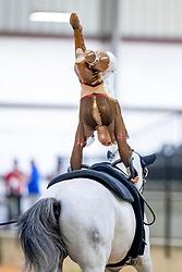 Büttiker Nadja, SUI, Acardi van de Kapel, Lunger Winkler-Bischofberger Monika<br /> World Equestrian Games - Tryon 2018<br /> © Hippo Foto - Stefan Lafrenz<br /> 22/09/18