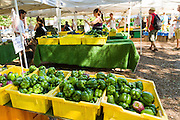 Fresh bell peppers on sale at a farmers market in Wicker Park August 2, 2015 in Chicago, Illinois, USA