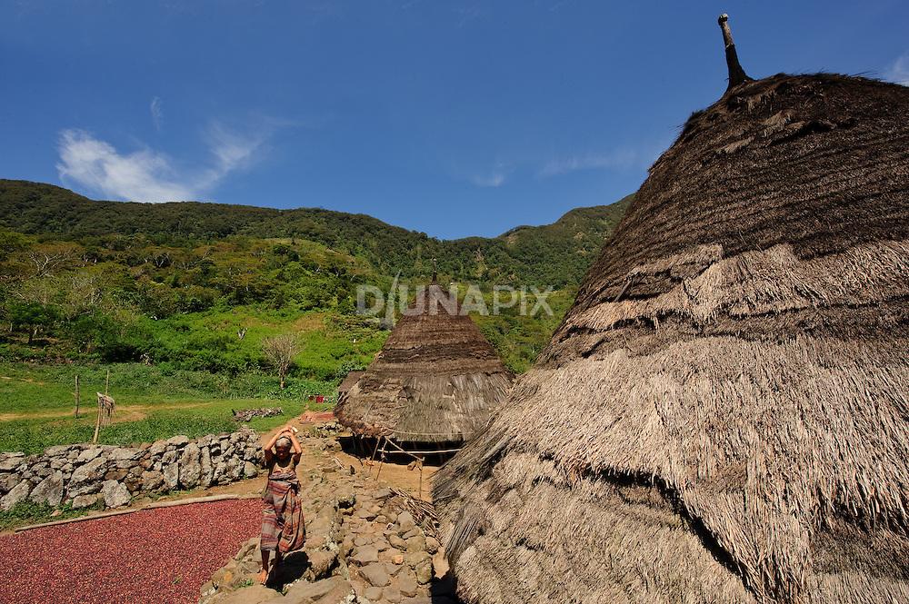 Traditional, thatch-roofed homes at Wae Rebo, Manggarai, Flores.