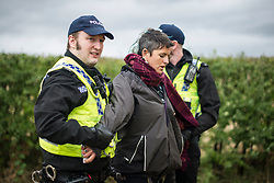 © Licensed to London News Pictures. 11/10/2017. Lancashire, UK.  A protester is arrested at the Anti-Fracking Demonstration in Kirby Misperton, Yorkshire. The protest blocked the entrance to Third Energy's Hydraulic fracking site after they were granted permission to set up their drilling rig at the site.  Photo credit: Steven Speed/LNP