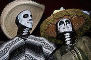 Dia de los Muertos, Austin Texas, October 23, 2010. At Mexic-Arte Museum's Viva la Vida Fest 2010.