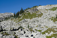 Boulder field and cairns, Marriott Basin Coast Mountains British Columbia