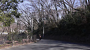 Chimpanzee escape<br /> <br /> On February 7th, 2017, Tokyo's Tama Zoological Park held a practice drill for what to do in the event an animal escaped from its enclosure.<br />  It is a drill held once a year alternating between Tama Zoological Park and the Ueno Zoo, and the scenario was a chimpanzee fleeing from its keepers. Though the chimpanzee was a costumed staff member, <br /> there were those among the unknowing park visitors who thought a chimpanzee had actually escaped as they watched it harass the drill participants, who were equipped like it was the real deal with tranquilizer guns. Altogether 80 people, from police officers to fire fighters participated in the drill.<br /> <br /> The person who dresses up as the animal is typically a new staff member. This time the chimpanzee keeper, Mr. Yosuke Taguchi <br /> played the part. In the past there have been drills for lions, snow leopards, and orangutans, and a chimpanzee, milu deer, red panda, and hermit ibis have actually escaped before.<br /> ©28LAB/EXCLUSIVEPIX MEDIA