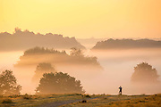 UNITED KINGDOM, London: 02 October 2015 A walker stops and admires the view of Autumn colours and mist as the sun rises in Richmond Park this morning. Rick Findler / Story Picture Agency