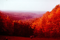 1975 Brown County Indiana<br />  Photos taken by George Look.  Image started as a color slide.