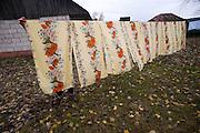 Yulia Nikolayenko, 79, pulls down dry linens outside her home in Dublin, near the Chernobyl radiation zone, on Oct. 24, 1009.