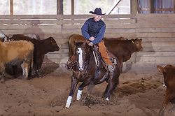 April 29 2017 - Minshall Farm Cutting 1, held at Minshall Farms, Hillsburgh Ontario. The event was put on by the Ontario Cutting Horse Association. Riding in the Open Class is Brian Kelly on Scarlet Catdancer owned by Ron Stelzl.