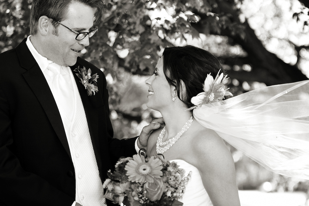 Melissa and Brent, wedding, 2011