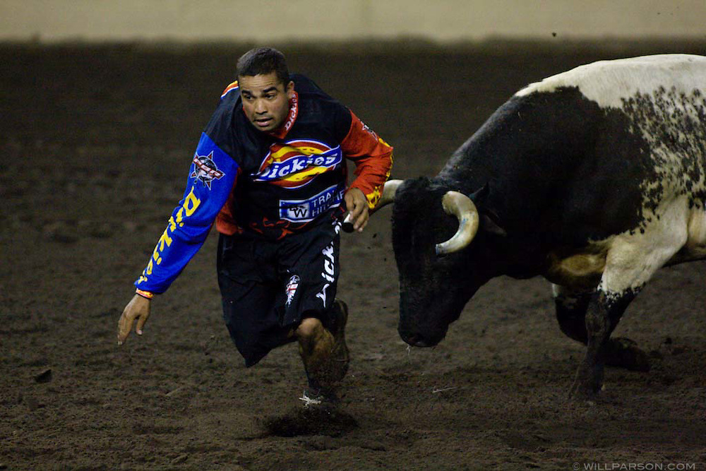 Aaron Hargo, a bullfighter from Somerset, CA, dodges a bull during the PBR rodeo at the Del Mar Fairgrounds in Del Mar, California on July 26th, 2008.  A bullfighter's job is to distract the bull while the rider makes it safely out of the arena.