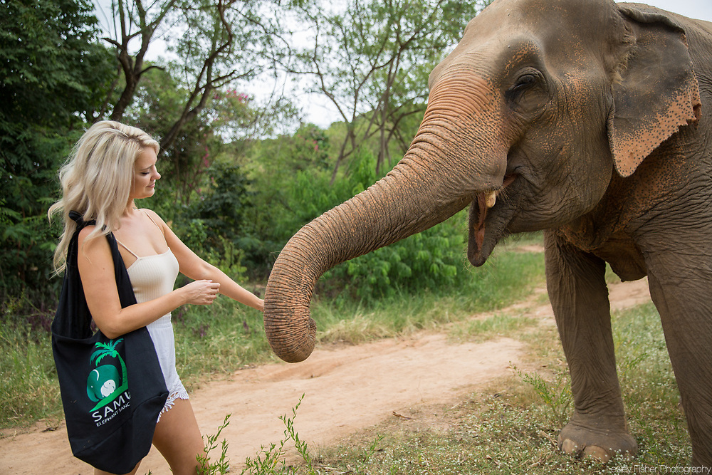 Samui Elephant Sanctuary located in Bophut, Koh Samui Thailand