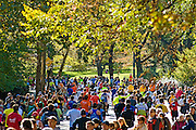 Marathon runners in Central Park during the New York City Marathon, held every November.
