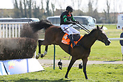 MOLLY THE DOLLY (4) ridden by Harry Skelton and trained by Dan Skelton winning The Class 2 J & D Pierce Novices Champion Handicap Steeplechase over 3m (£100,000) during the Scottish Grand National race day at Ayr Racecourse, Ayr, Scotland on 13 April 2019.