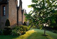 Sunrise over a border next to Chenies Manor House, Chenies, Rickmansworth, Buckinghamshire, UK