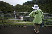 Big Island. Akaka Falls State Park. Akaka Falls.