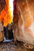 Slot canyon, Kanarra Creek Falls, near Cedar City, Utah USA