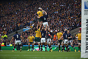 Australia winning a lineout in a toughly fought 1st half during the Rugby World Cup Quarter Final match between Australia and Scotland at Twickenham, Richmond, United Kingdom on 18 October 2015. Photo by Matthew Redman.