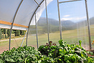 Hoop house full size
